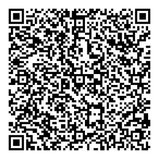 qr_code_anin_wp