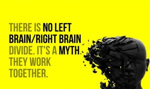 lr brain2